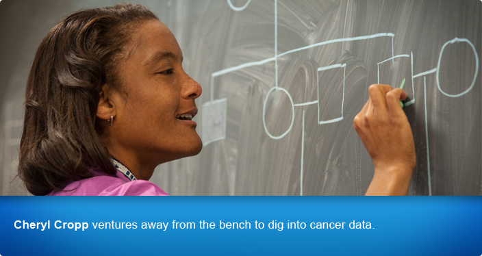 Cheryl Cropp ventures away from the bench to dig into cancer data.