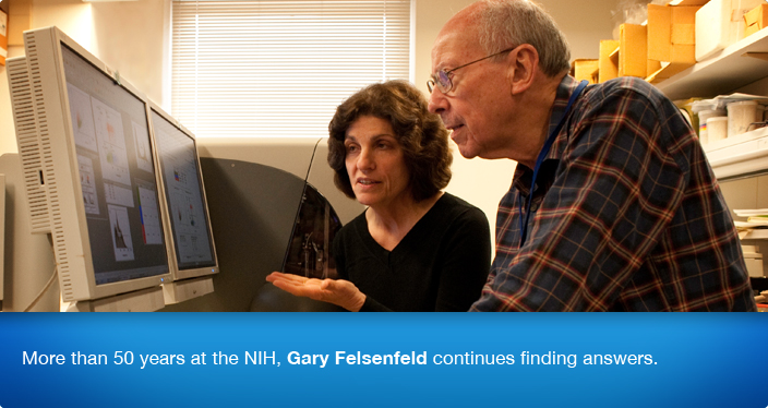 More than 50 years at the NIH, Gary Felsenfeld continues finding answers