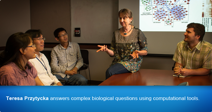Teresa Przytycka answers complex biological questions using computational tools.