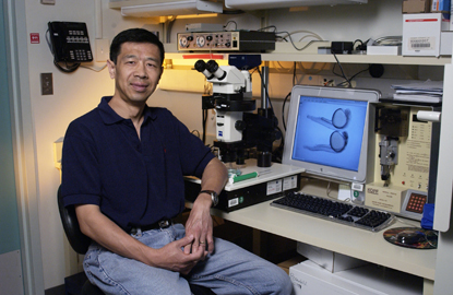 Paul Liu in his lab