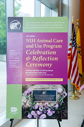 Animal Care and Use Program Celebration poster