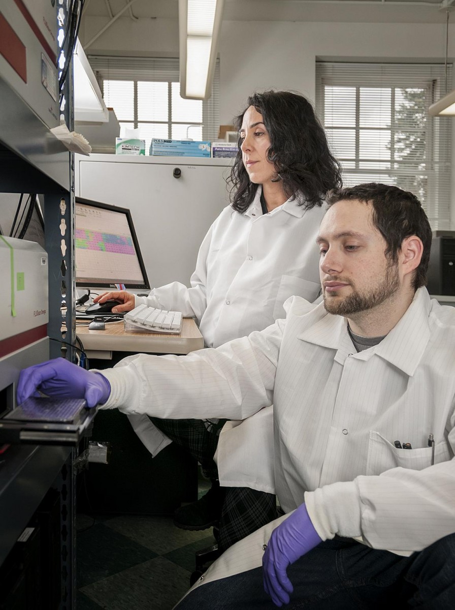 NIAID's Bradley Groveman and Christina Orru using the RT-QuIC diagnostic assay