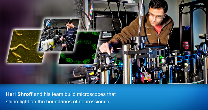 Hari Shroff and his team build microscopes that shine light on the boundaries of neuroscience.