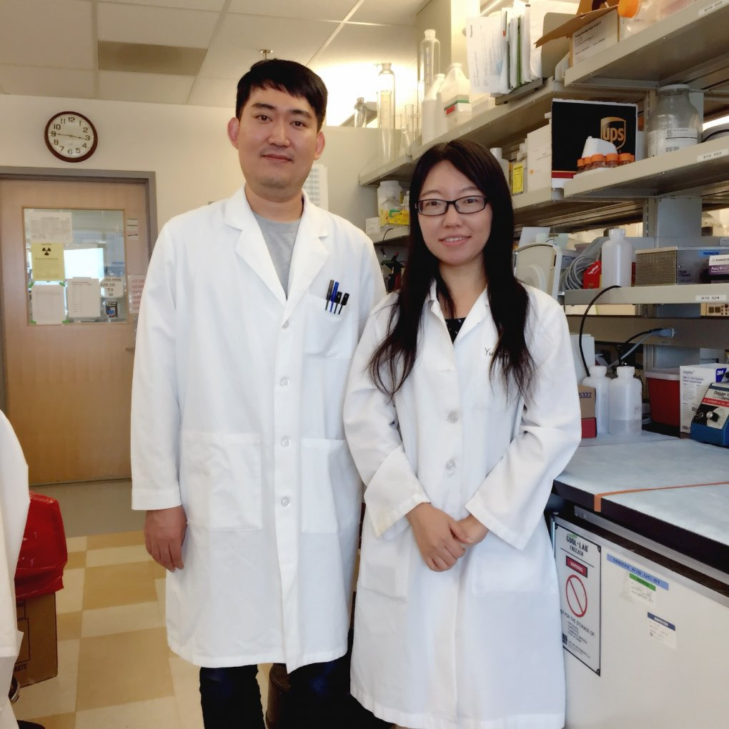 Drs. Hyundong Song and Yujun Hou, standing together here in their lab, are postdoctoral fellows working to find ways that doctors may one day effectively treat Alzheimer's disease.
