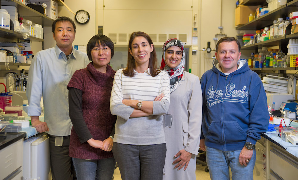 A team of researchers in the lab at the NIH IRP