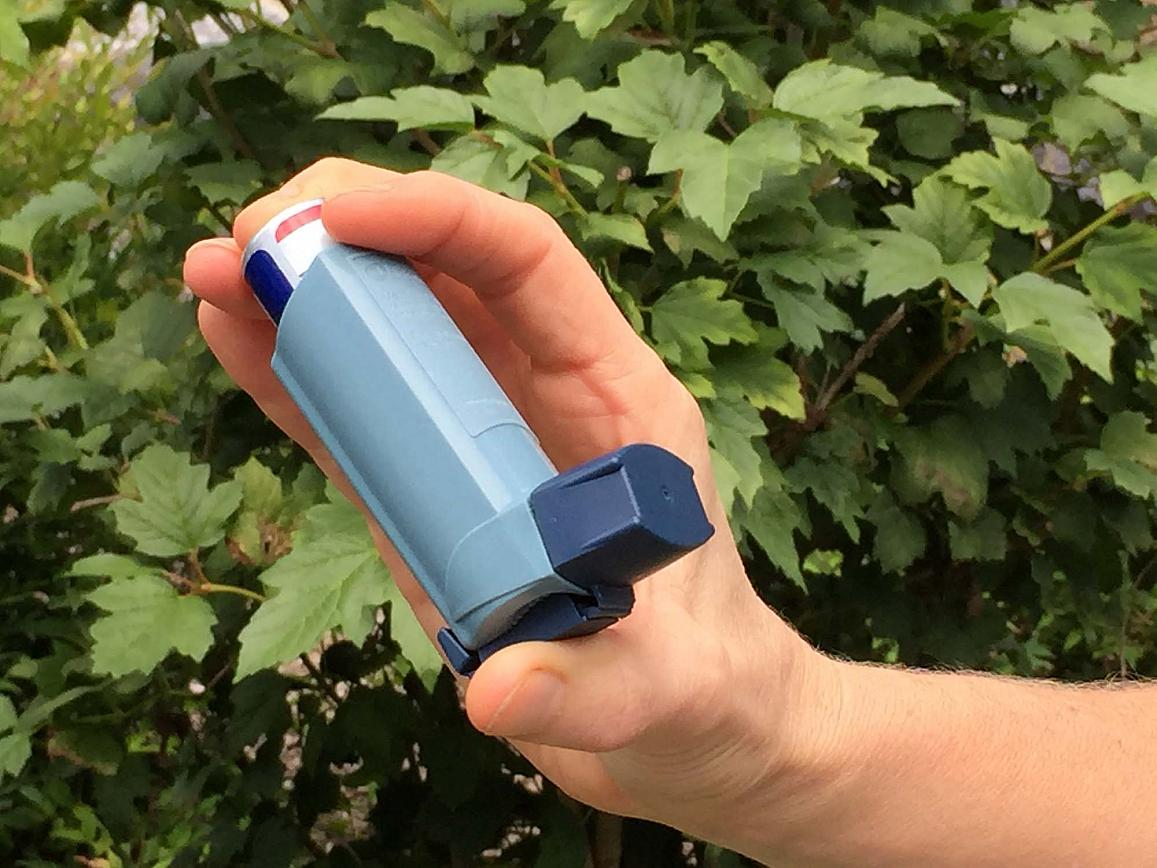 A Hiatus From Food Could Benefit Asthma Patients | NIH