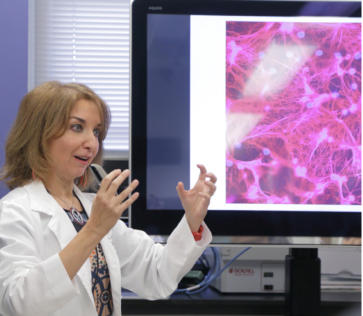 Dr. Mariana Kaplan discusses images of neutrophil extracellular traps (NETs), a key contributor to blood vessel damage in patients with lupus.
