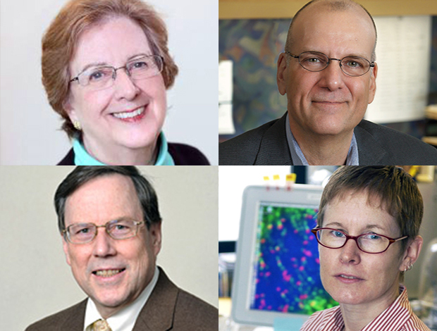 the four IRP investigators elected as 2018 AAAS Fellows