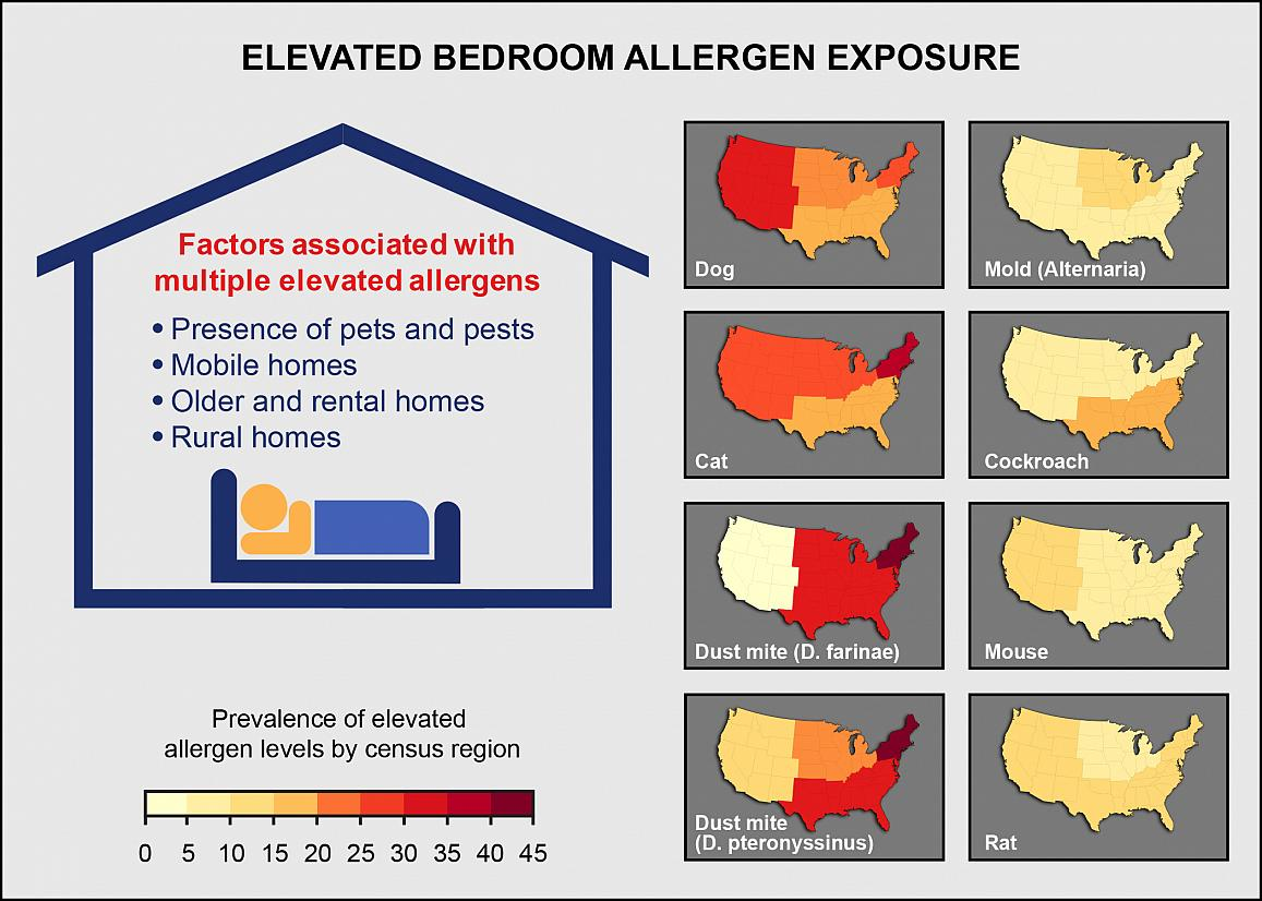 Graphic showing factors contributing to elevated bedroom allergen levels include presence of pets and pests, type of housing, and living in rural areas. Individual allergens vary by geographic area.