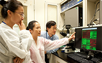 Visiting fellows Man Li, MD., Ph.D., and Yan Cai, M.D., Ph.D., and Dr. Gao examine results of microarray analysis of gene expression from alcoholic livers at a computer in the lab.