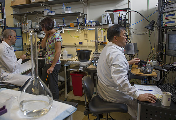 Principal Investigator Veronica Alvarez (center) at work in the lab with postdoctoral fellows Martín Adrover (left) and Jung Hoon Shin