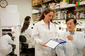 Dr. Bin Gao and visiting fellow Adeline Bertola, Ph.D., discuss microscope slides containing samples of liver tissues in their lab at NIH.