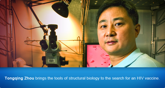 Tongqing Zhou brings the tools of structural biology to the search for an HIV vaccine.
